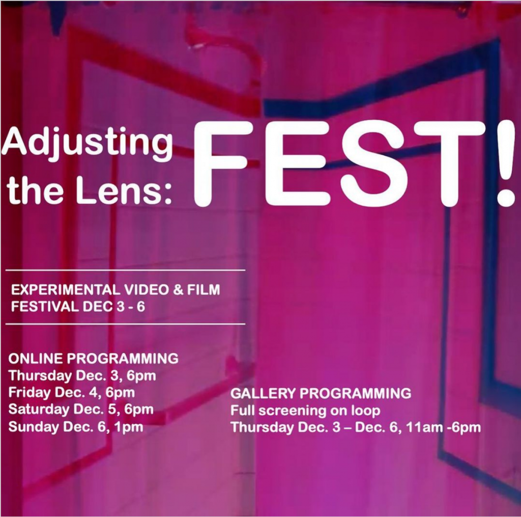 Adjusting the Lens Fest